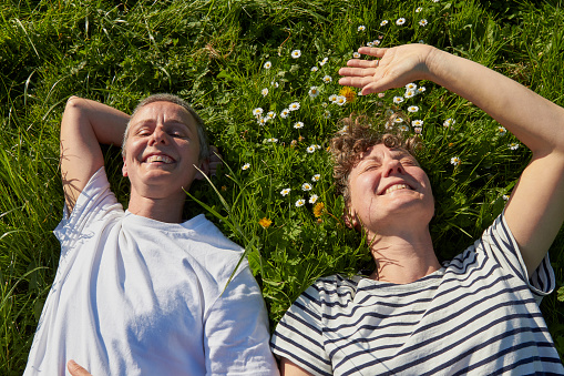 Portrait of couple lying on grass smiling - gettyimageskorea