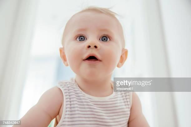 portrait of curious baby boy - männliches baby stock-fotos und bilder