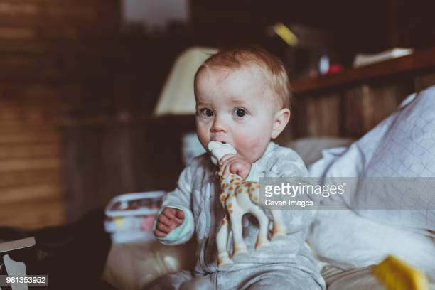 portrait of cute baby girl biting toy animal while sitting on bed - toy animal stock photos and pictures