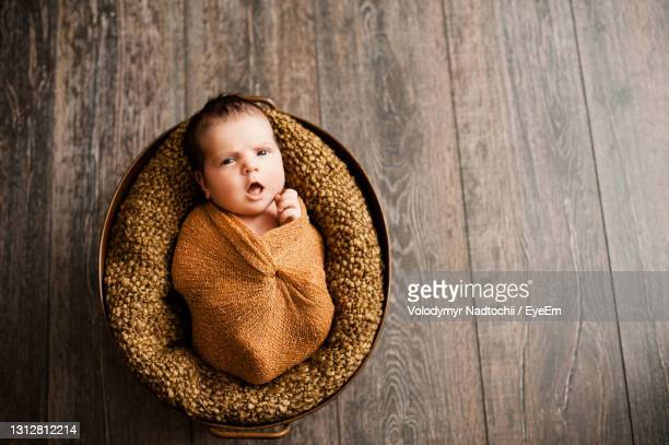 portrait of cute baby girl lying on wood - animal nest stock pictures, royalty-free photos & images