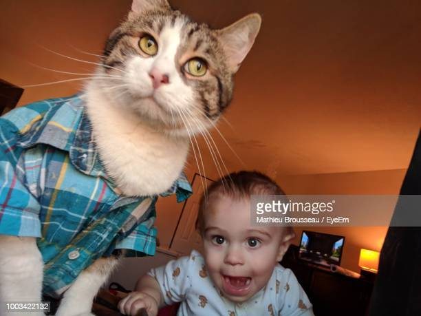 portrait of cute boy with cat at home - pet clothing stock pictures, royalty-free photos & images