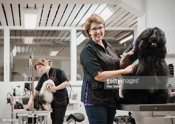 Portrait of dog and groomer in dog grooming salon
