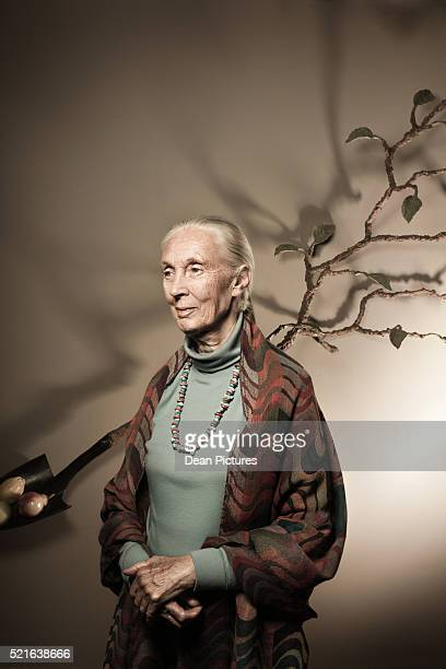 portrait of ethologist jane goodall - philanthropist stock pictures, royalty-free photos & images
