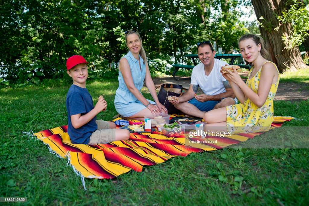 Portrait of family enjoying a picnic in public park in summer. : Stock Photo
