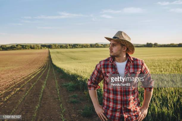 portrait of farmer standing with arms crossed in the field - one mid adult man only stock pictures, royalty-free photos & images