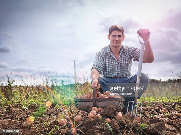 portrait of farmer with basket of organic potatoes - raw potato stock pictures, royalty-free photos & images