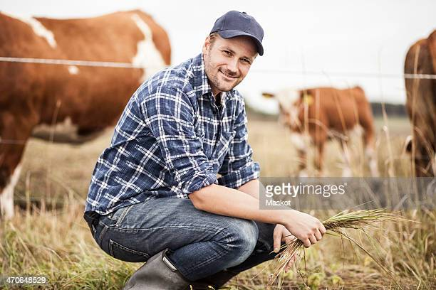 Portrait of farmer with grass crouching on field while animals grazing in background