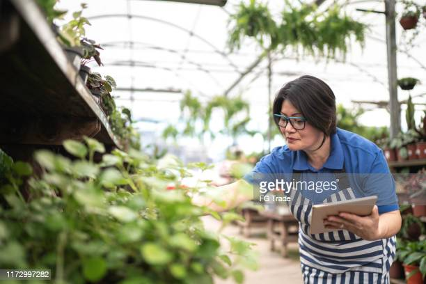 portrait of florist using tablet at small business flower - garden center stock pictures, royalty-free photos & images