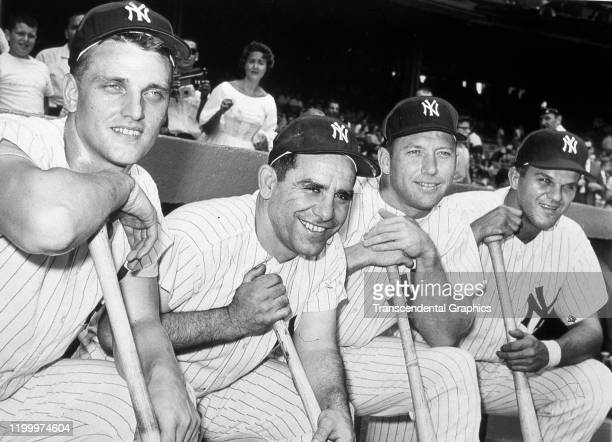 Portrait of four members of the New York Yankees as they pose in the dugout at Yankee Stadium New York New York 1961 Pictured are from left are Roger...