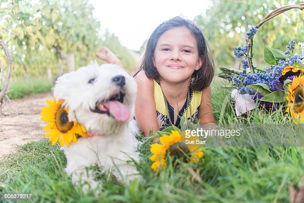 Portrait of girl and dog lying in vineyard with sunflowers