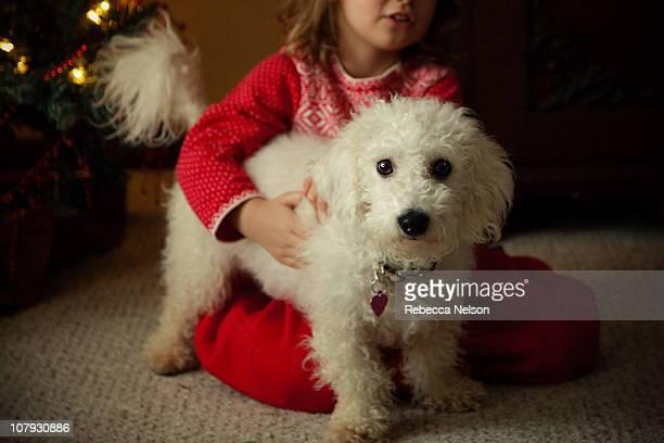 Portrait of girl holding onto small white dog