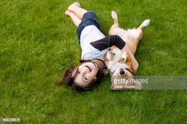 portrait of girl playing with dog on field in yard - gedomesticeerde dieren stockfoto's en -beelden