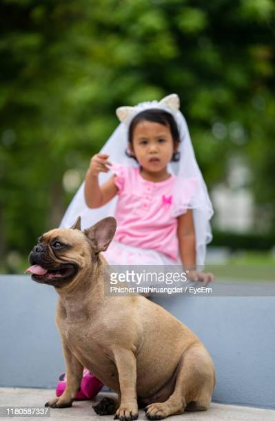 portrait of girl sitting with dog by retaining wall - phichet ritthiruangdet stock photos and pictures