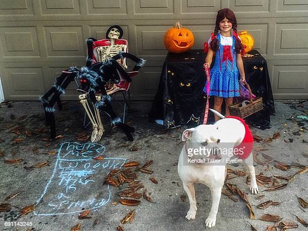 portrait of girl with american bulldog and spooky decoration during halloween - american bulldog stockfoto's en -beelden