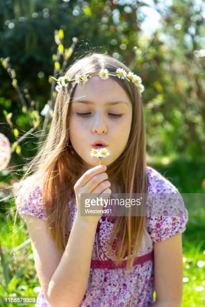 portrait of girl with daisies in garden - mädchen stock-fotos und bilder