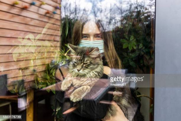 portrait of girl with surgical mask and cat behind window pane - cat face mask stock pictures, royalty-free photos & images