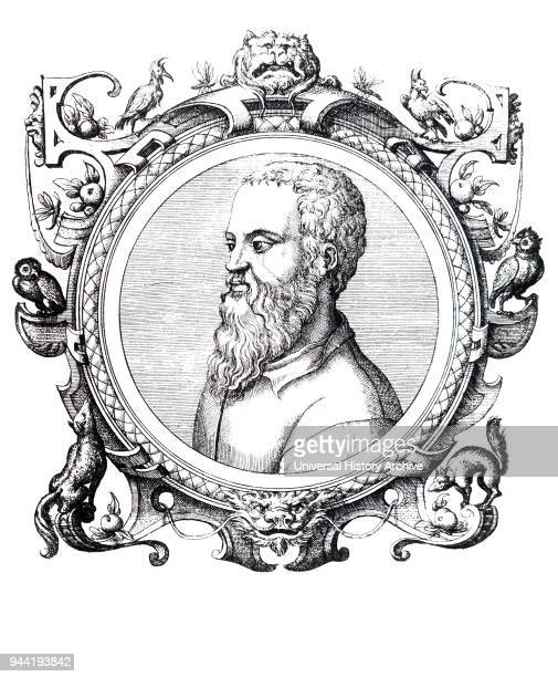 Portrait of Guillaume Rondelet a professor of medicine at the University of Montpellier in Southern France Dated 16th century