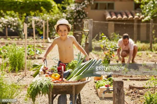 Portrait of happy boy pushing wheelbarrow in yard