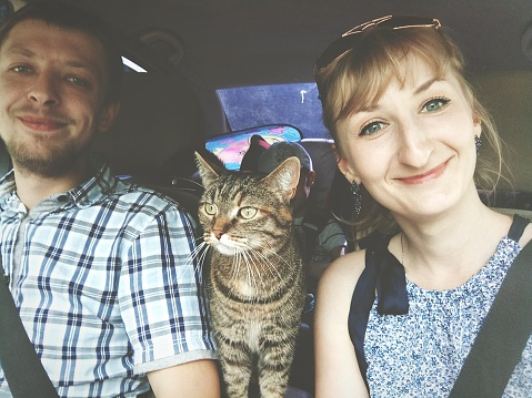 Portrait Of Happy Couple With Cat Traveling In Car - gettyimageskorea