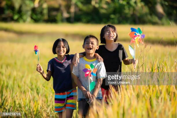 portrait of happy joyful child in green and yellow farmland background. - malaysia beautiful girl stock photos and pictures