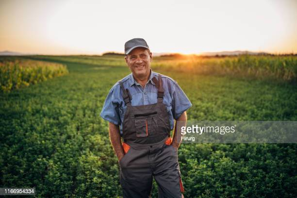portrait of happy senior farmer - farm worker stock pictures, royalty-free photos & images