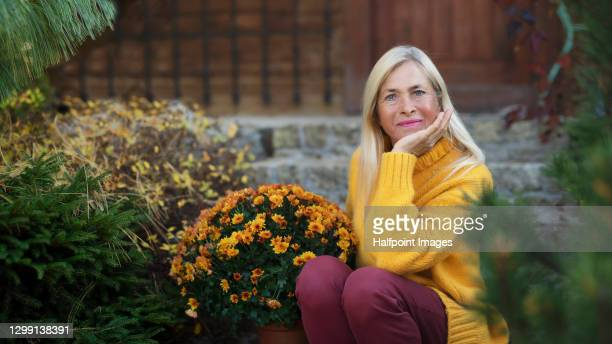 portrait of happy senior woman outdoors in autumn garden. - chrysanthemum stock pictures, royalty-free photos & images
