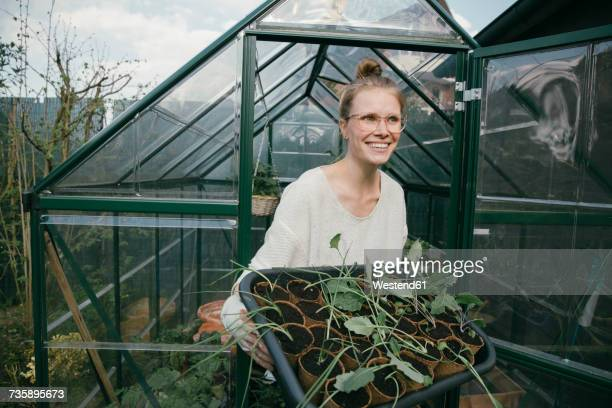 portrait of happy young woman with potted seedlings in front of greenhouse - brassica rapa stock photos and pictures