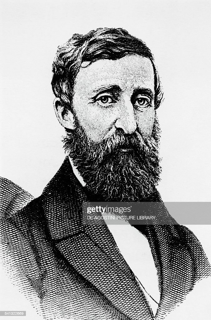 Portrait Of Henry David Thoreau Philosopher And Writer
