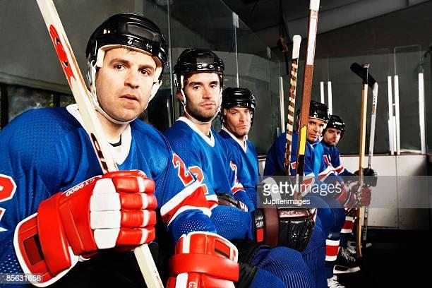 Portrait of hockey team