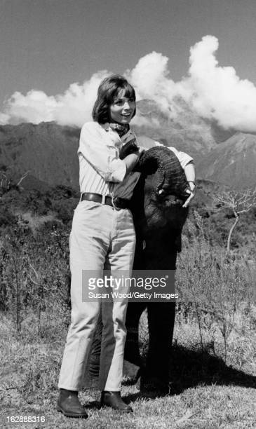 Portrait of Italian actress Elsa Martinelli and a baby elephant during the filming of 'Hatari' Tanzania 1962