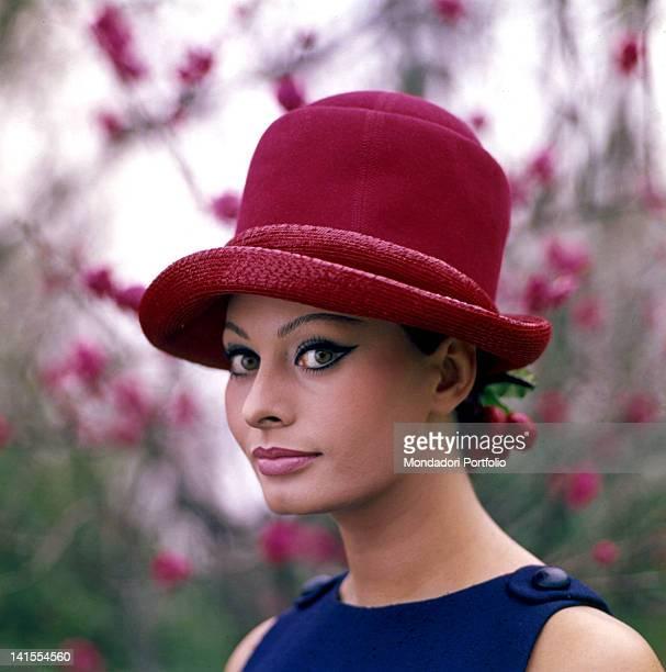 Portrait of Italian actress Sophia Loren 1964