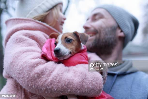 Portrait of Jack Russel Terrier puppy