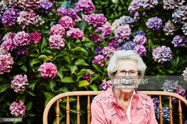 portrait of laughing senior woman sitting in backyard garden - senior women stock pictures, royalty-free photos & images