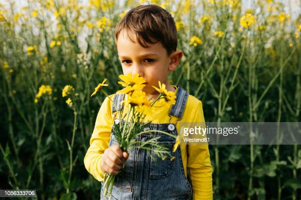 Portrait of little boy smelling picked flowers in nature