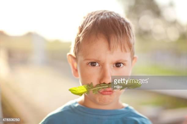 Portrait of little boy taken outdoors