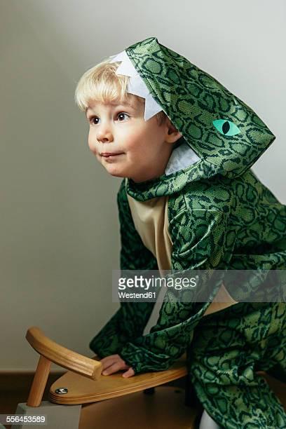 Portrait of little boy wearing dinosaur costume at home