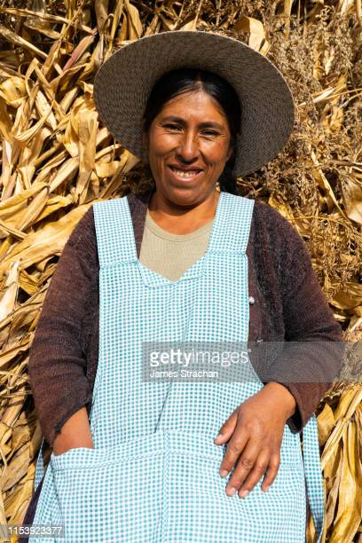 portrait of local farmer woman in local traditional clothes, resting against a stack, potolo, bolivia (model release) - james strachan stock pictures, royalty-free photos & images