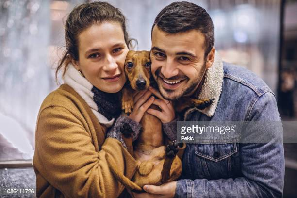 portrait of lovely couple and cute brown dog - dachshund christmas stock pictures, royalty-free photos & images