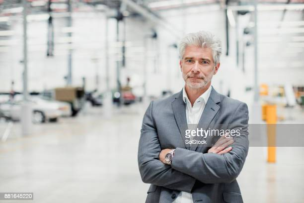 retrato de ceo de macho - diretora executiva de empresa - fotografias e filmes do acervo