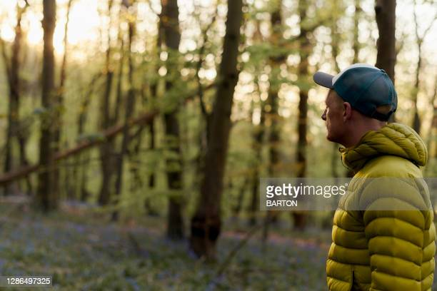 portrait of man hiking in woodland - climate change stock pictures, royalty-free photos & images