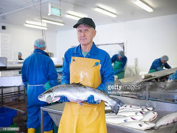 Portrait of man holding fresh hand-reared Scottish salmon in factory of  fish farm