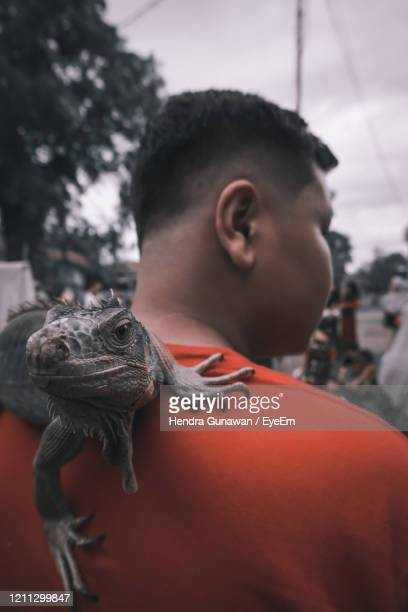 portrait of man looking away - exotic pets stock pictures, royalty-free photos & images