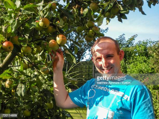 Portrait Of Man Picking Apples From Tree At Orchard