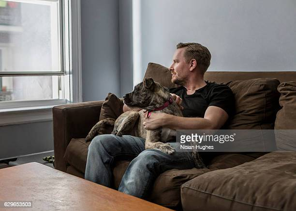 portrait of man sitting on couch with pet dog - americas next top dog stock pictures, royalty-free photos & images