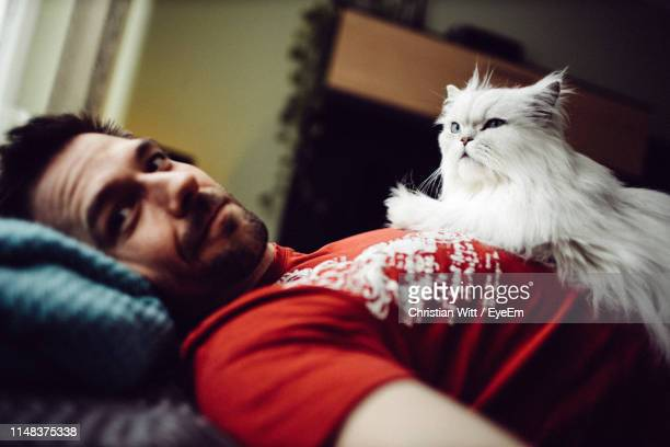 portrait of man with cat relaxing on bed at home - purebred cat stock pictures, royalty-free photos & images