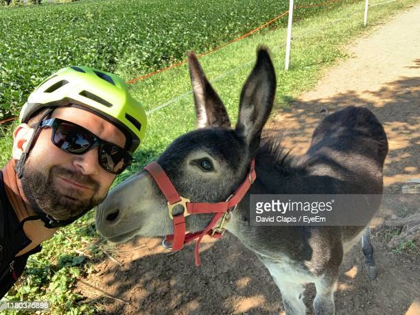 portrait of man with donkey - donkey stock pictures, royalty-free photos & images
