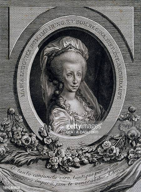 Portrait of Maria Luisa of Spain, or Maria Ludovica , Empress consort of Leopold II , emperor of the Holy Roman Emperor and Grand Duke of Tuscany ,...