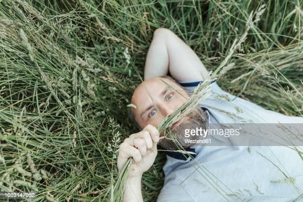 portrait of mature man lying on grass pulling funny faces - schrägansicht stock-fotos und bilder