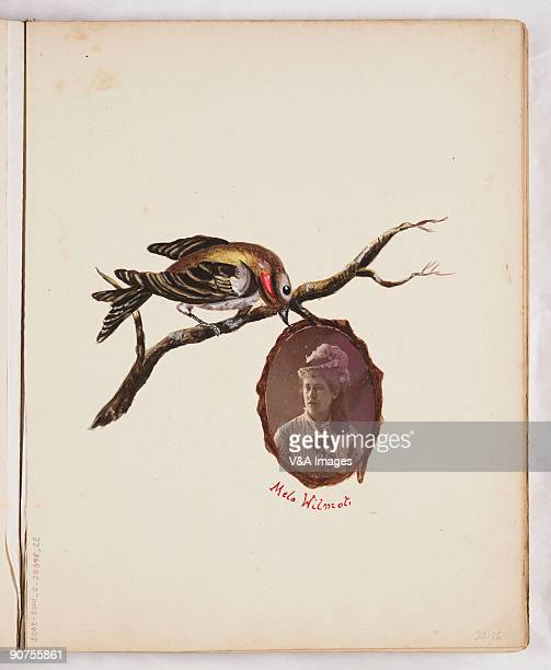 UNITED KINGDOM NOVEMBER 15 Portrait of Mela Wilmot with a bird on a branch from a handdecorated album of cartesdevisite portraits in albumen with...