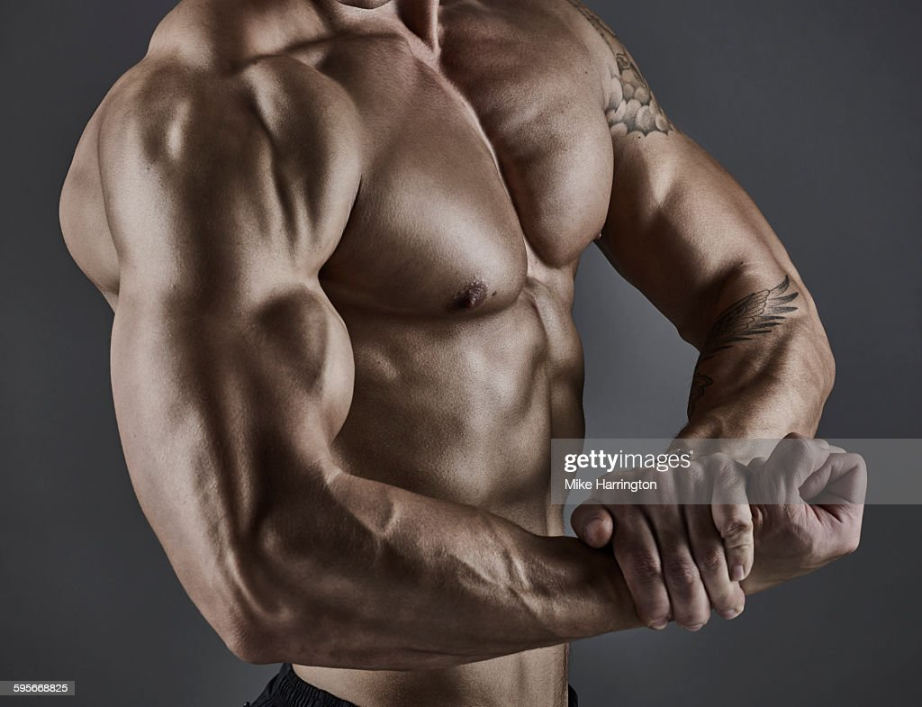 Portrait of muscular male bodybuilder. : Stock Photo